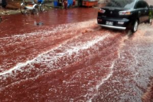 Dhaka animal sacrifices turns street red with blood (PHOTO)