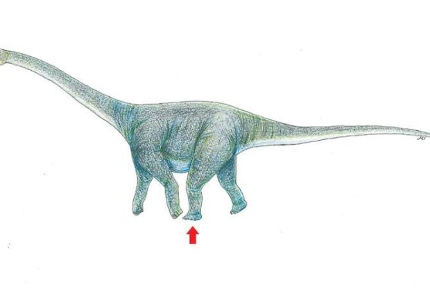 A drawing illustrating the dinosaur that may have left a footprint in Mongolia's Gobi Desert CREDIT: OKAYAMA UNIVERSITY OF SCIENCE
