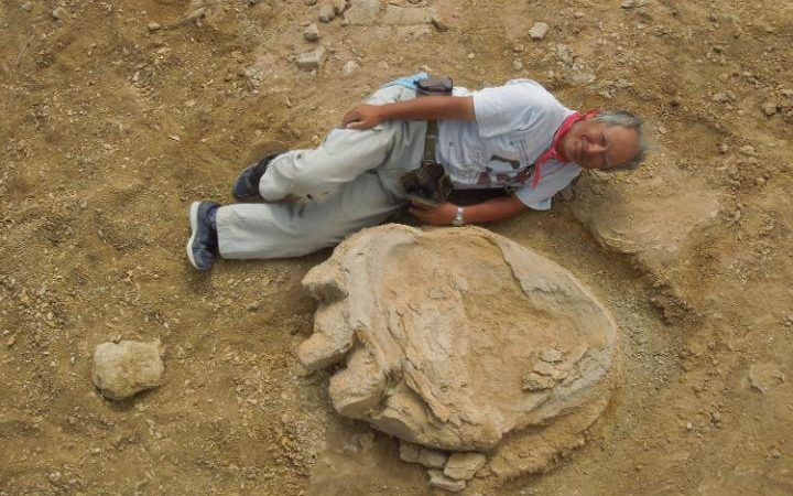 Professor Shinobu Ishigaki lying next to a dinosaur footprint in the Mongolian Gobi Desert CREDIT: OKAYAMA UNIVERSITY OF SCIENC