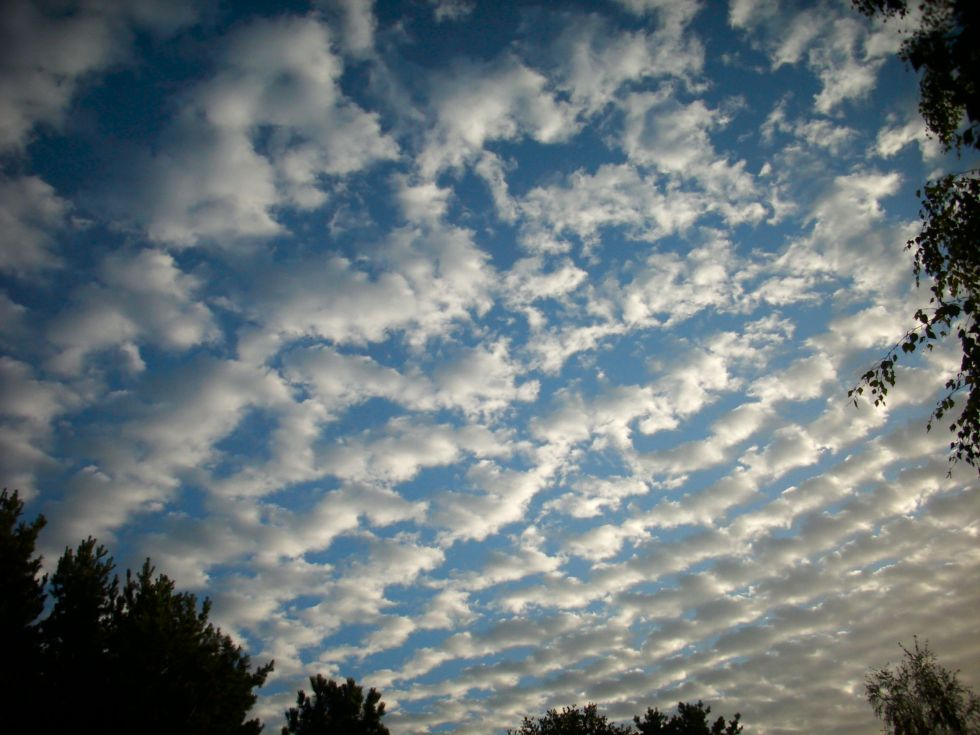 altocumulus-rain-clouds