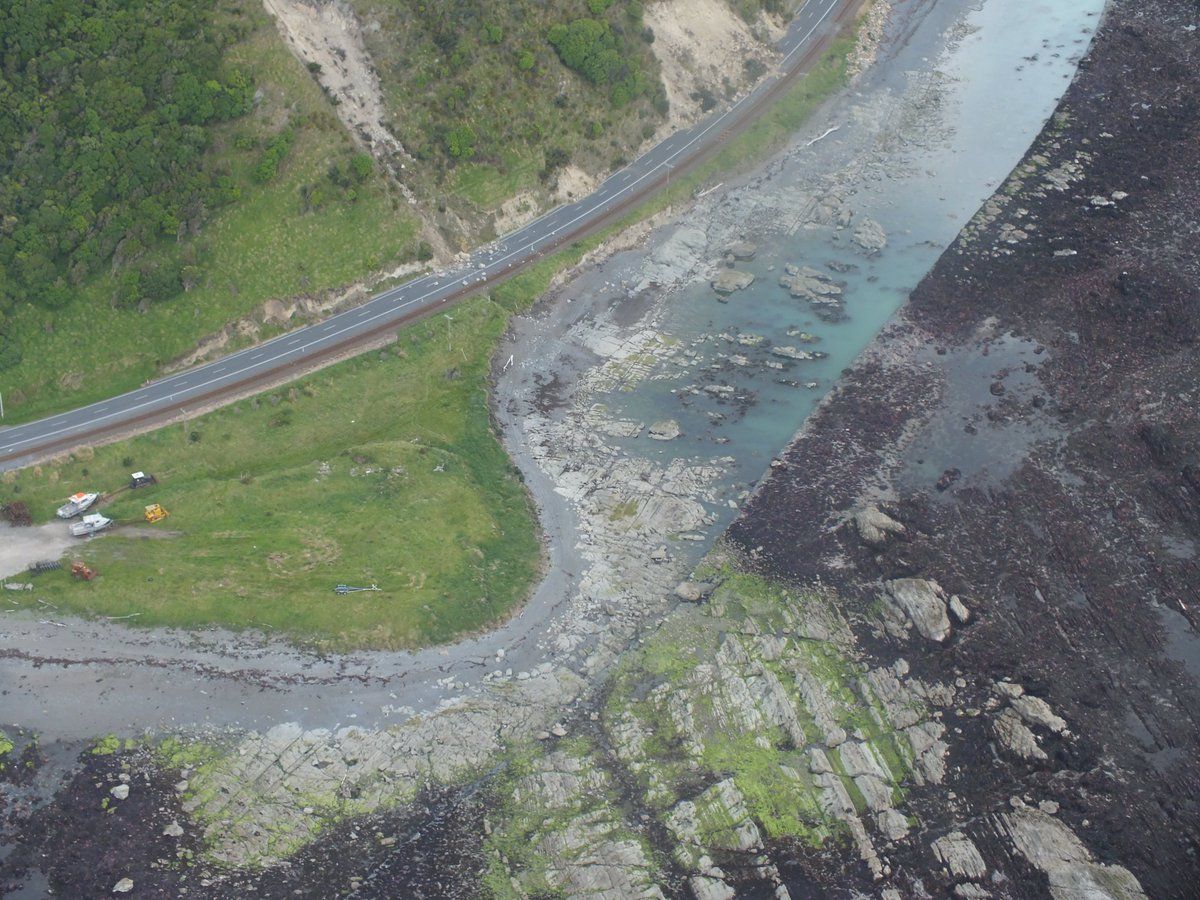 kaikoura-lifted-seabed-source-the-guardian