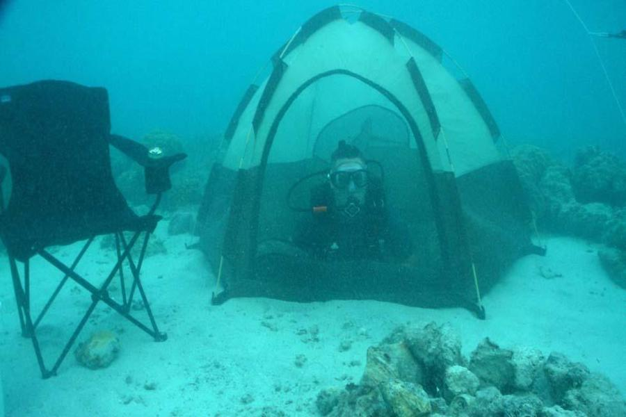 bizzare camping underwater