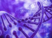 gene editing experiment