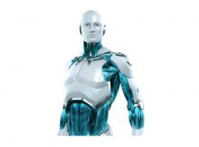 humanoid robot industry