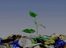 solid waste management market