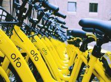 ofo bike sharing operations