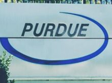 purdue pharma offers free opioid therapy