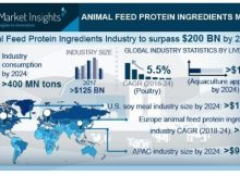 Animal Feed Protein Ingredients Market